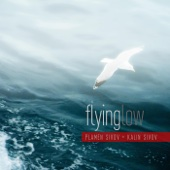 Flying Low (feat. Kalin Sivov)