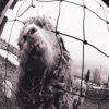 Vs. (Expanded Edition), Pearl Jam