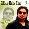Dildar Hain Hum
