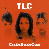 TLC - CrazySexyCool  artwork