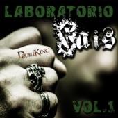 Laboratorio FAIS, Vol. 1