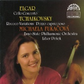Variations on a Rococo's Theme for Cello and Orchestra, Op. 33: Variation V. Allegro moderato