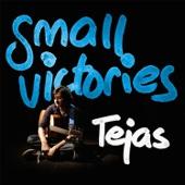 Tejas Menon - Small Victories - EP artwork