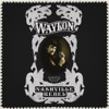 Nashville Rebel, Waylon Jennings