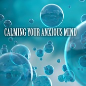 Calming Your Anxious Mind - Anti Stress Relax Music