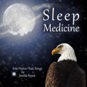 Sleep Medicine (30 Solo Native American Flute Tracks)