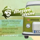 Gregor Meyle präsentiert Meylensteine - Various Artists