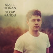 niall horan-slow hands