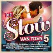 Die Slow Van Toen, Vol. 5