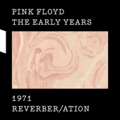 The Early Years 1971: Reverber/ation - EP