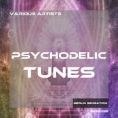 Various Artists - Psychodelic Tunes artwork