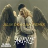 Aripile (Alin Dragan Remix) - Single, Carla's Dreams