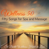Wellness 50 – Fifty Songs for Spa and Massage - St Barth Wellness Hotel de Luxe