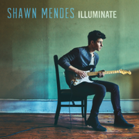 descargar bajar mp3 Shawn Mendes There's Nothing Holdin' Me Back