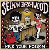 Guilty Pleasures - Selwyn Birchwood