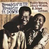 Breakin' It Up, Breakin' It Down (Live)
