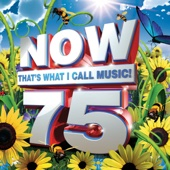 Now That s What I Call Music 75 Various Artists