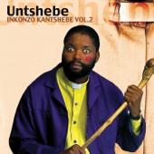 Inkonzo Ka Ntshebe, Vol. 2 - UNTSHEBE