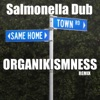 Same Home Town (Organikismness Remix) - Single, Salmonella Dub
