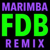 F.D.B. (Hip Hop Trap Marimba Remix)