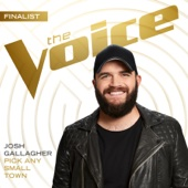 Josh Gallagher - Pick Any Small Town (The Voice Performance) artwork