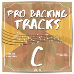 Pro Backing Tracks C, Vol. 15