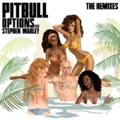 Options (feat. Stephen Marley) [DJ Noodles Remix]