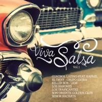Salsa - Salsa De Cuba