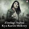 Zindagi Tujhse Kya Karen Shikvey