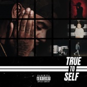 Bryson Tiller - True to Self artwork