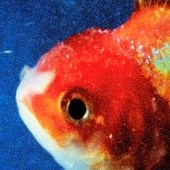 Big Fish Theory - Vince Staples