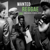 Wanted Reggae: From Diggers to Music Lovers