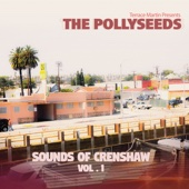 Terrace Martin Presents The Pollyseeds - Sounds of Crenshaw, Vol. 1  artwork