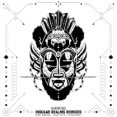 Insular Realms Remixes