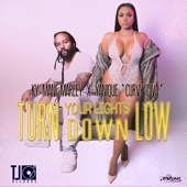 Turn Your Lights Down Low - Ky-Mani Marley & Yanique 'Curvy Diva'