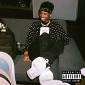No Complaints (feat. Offset & Drake) - Metro Boomin Cover Art