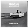 Fake Magic - Single