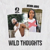 J-Sol & Meron Addis - Wild Thoughts обложка