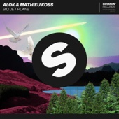 Big Jet Plane - Alok & Mathieu Koss