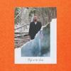 Justin Timberlake - Man of the Woods  artwork