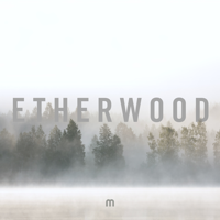 Etherwood - Climbing artwork