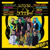 What Da Funk - WDF1 artwork