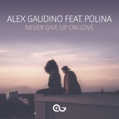 Alex Gaudino - Never Give Up on Love (feat. Polina) artwork