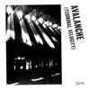 Avalanche (Terminal Velocity) [feat. Jarvis Cocker] ジャケット写真