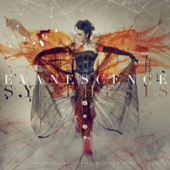 Evanescence - Imperfection  artwork