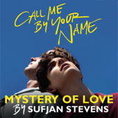 Mystery of Love - Sufjan Stevens