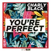 Charly Black - You're Perfect artwork