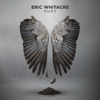 Hurt - Eric Whitacre & Eric Whitacre Singers