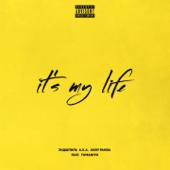 It's My Life (feat. TumaniYO) - Endshpil