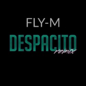 Despacito (Kizomba Remix)
